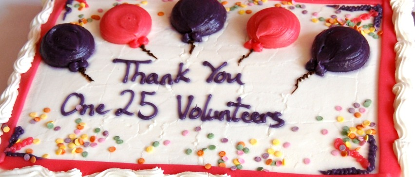 Volunteer Cake highlighted