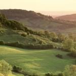One25 walks - Cotswold way